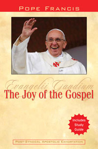 Pope Francis: The Joy of the Gospel